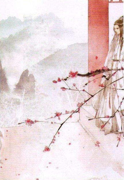 求大神制作网络小说封面,字体最后是古风体的 题目 满园梅花