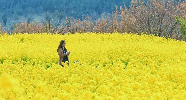 这周末一定要去徐州吕梁山风景区