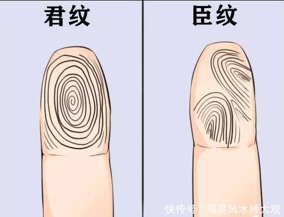 手相看命运:手指纹簸箕纹,斗纹看出你的事业运和个性!