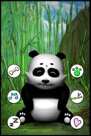 会说话的熊猫截图2