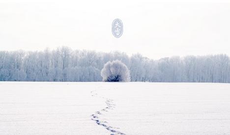 描述大雪的唯美诗词有哪些?